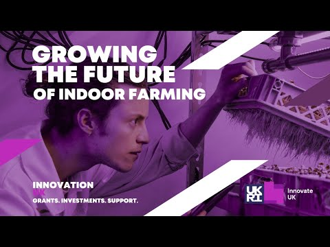 Lettus grow are making indoor farms more efficient.