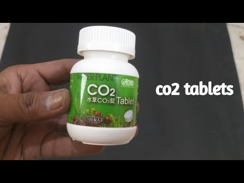 Co2 tablets for fish aquarium ista co2 for plant