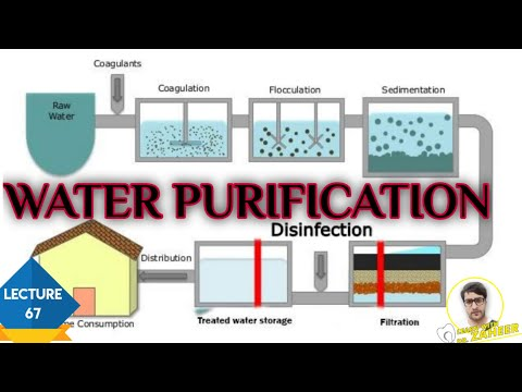 Water purification(potable water)
