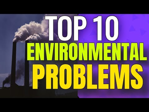 Top 10 local environmental issues you should know.
