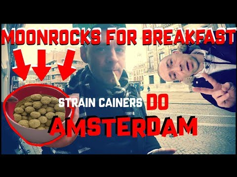 Moonrocks for breakfast- amsterdam coffeeshops , hash cakes n cannabis strains (where to find them)