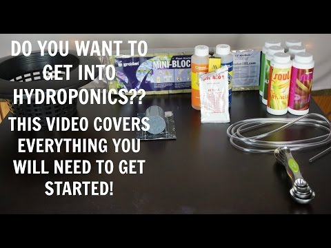 Hydroponics for beginners | what will i need to grow? | hydroponics