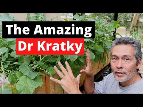 Dr kratky | kratky method hydroponics | diy