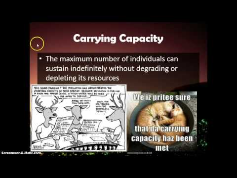 Earth as a system / sustainability