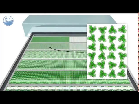 Dry hydroponics - profitable lettuce production from a m a