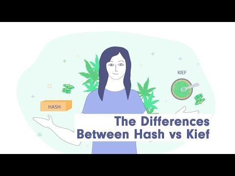 The differences between hash vs kief