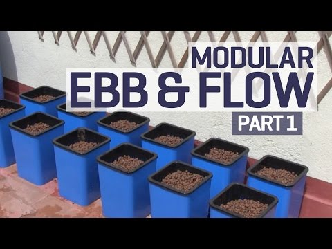 How to set up an ebb and flow / flood and drain hydroponics growing system - part 1 of 6