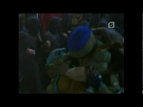 Tmnt leo & venus - how did i fall in love with you