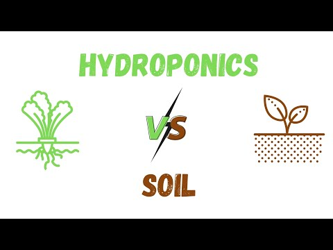 Why use hydroponics gardening over soil? use of hydroponics in growing crops. good or bad?