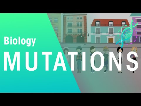 Mutations and natural selection | evolution | biology | fuseschool