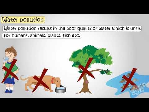 Sources of water pollution   science   grade-4,5   tutway  