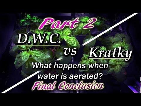 Kratky vs dwc - aeration vs no aeration (hydroponic basil) part 2