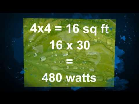 What wattage grow light should i use | hydroponics halifax
