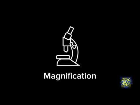 How to calculate magnification