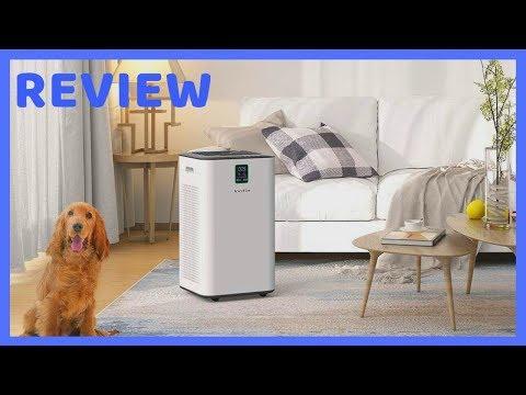 Inofia air purifier with true hepa air filter review [✔️inofia pm1539 ]
