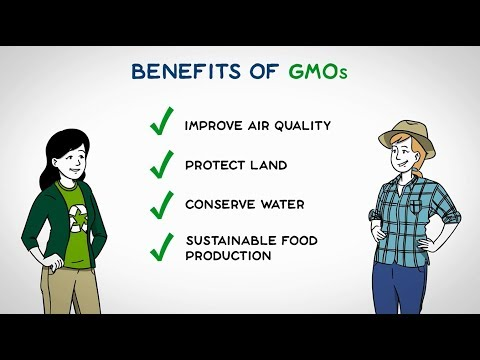 Let's discuss gmo effects on the environment   gmo answers