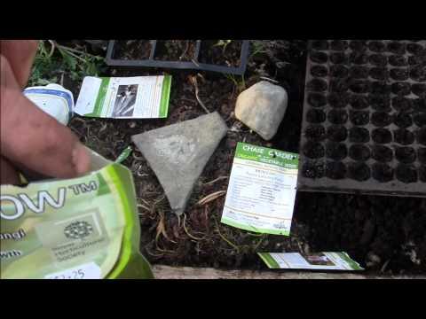Amazing mycorrhizal fungi for growing vegetables!