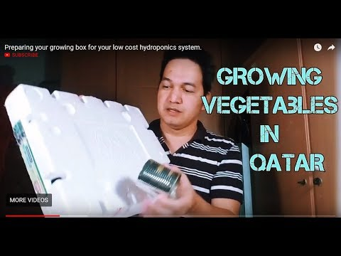 Preparing your growing box for your low cost hydroponics system.