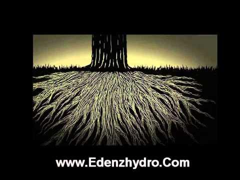 Voodoo juice: advanced nutrients - hydroponics - lapeer, michigan