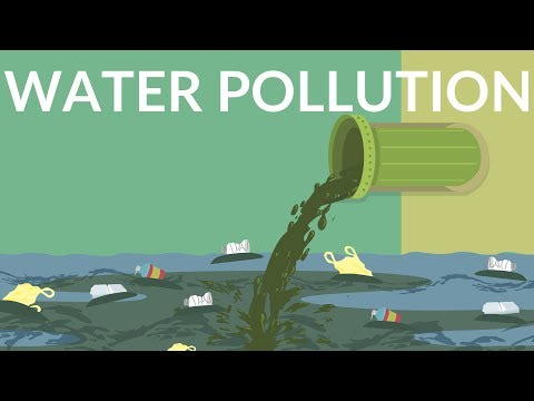 Water pollution   water contamination   video for kids