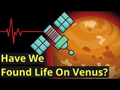Have we found life on venus ? | nasa |