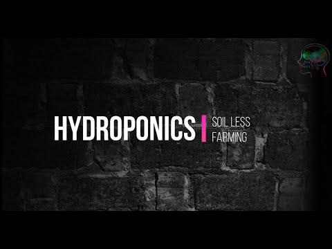 Hydroponics: beginner's guide (part 1)