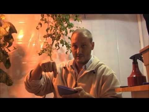 Natural carbon dioxide co2 enrichment for indoor grow rooms