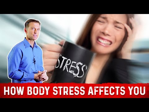 Stressors | causes of stress & how it affects your body - dr. eric berg