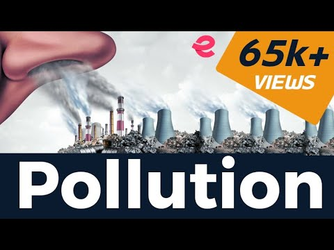 What are different types of pollution   environmental issues   ecology   extra class neet