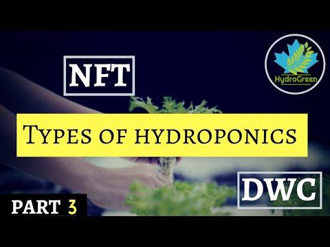 हाइड्रोपोनिक्स खेती के प्रकार i different types of hydroponics system i hydroponics training part 3