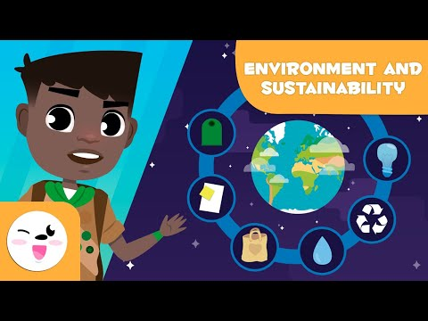 How to take care of the environment - 10 ways to take care of the environment