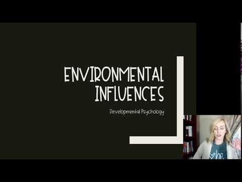 Intro to development notes part 2 environmental influences by mandy rice for ap psychology