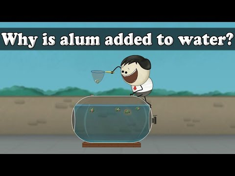 Water purification - why is alum added to water? | #aumsum #kids #science #education #children