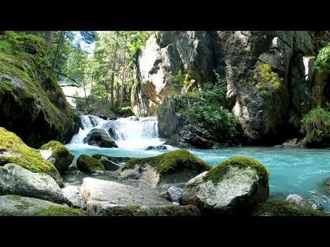Beautiful forest cascade, natural, relaxing - #shorts