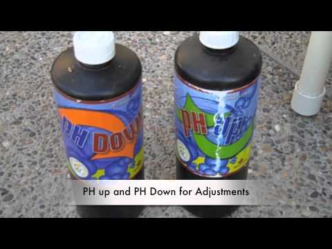Hydroponic nutrient and ph strategy