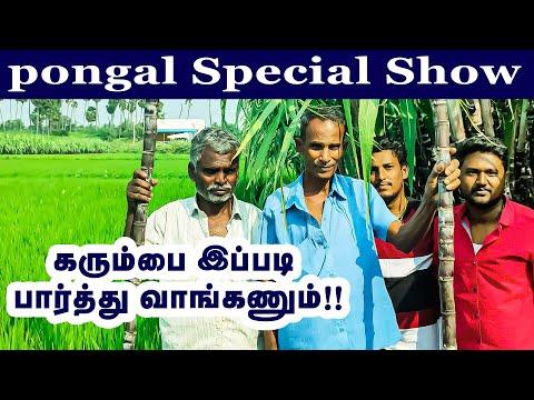 கரும்பை எப்படி பார்த்து வாங்கணும் ? | பொங்கல் சிறப்பு வீடியோ பதிவு | pongal special show | tamil