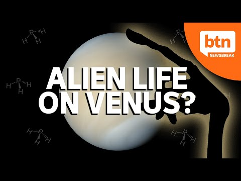 Could there be alien life on the planet venus?