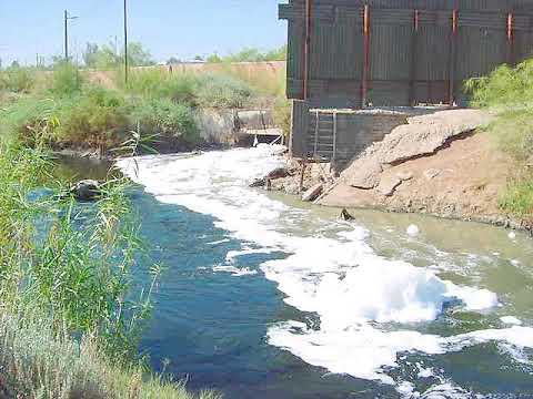 Environmental impact | wikipedia audio article