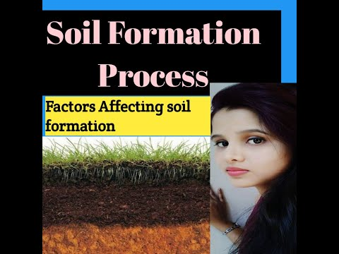 #soil formation process#factors affecting formation of soil#