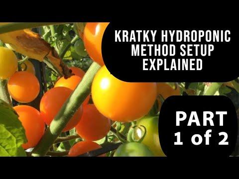 B.a. kratky method hydroponics - part 1 of 2 tote diy