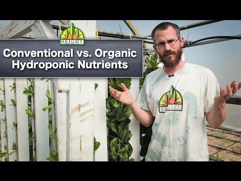 Hydroponics safety: conventional vs. organic hydroponics