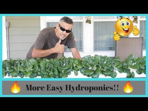 More easy hydroponics!!