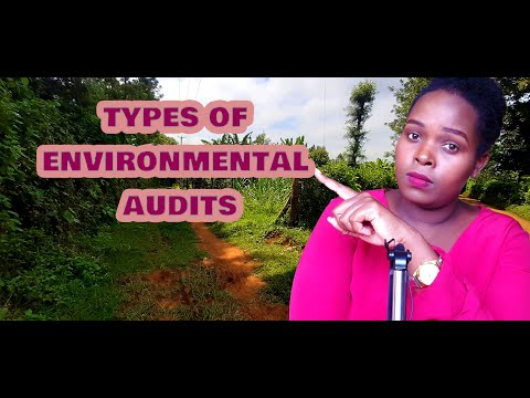 Types of environmental audit you need to know.