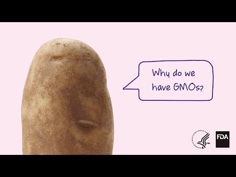 Why do we have gmos?