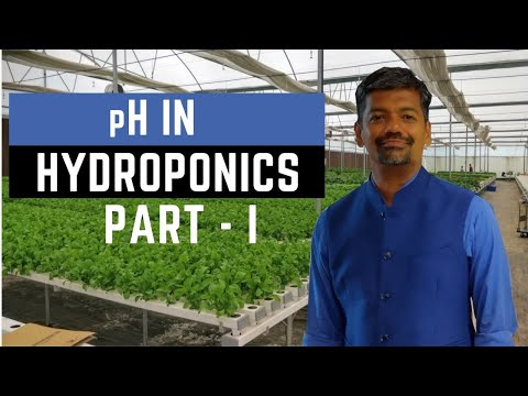 Guide to understanding ph in hydroponics - part i
