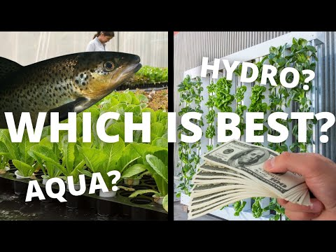 Do you know the difference between hydroponics and aquaponics?