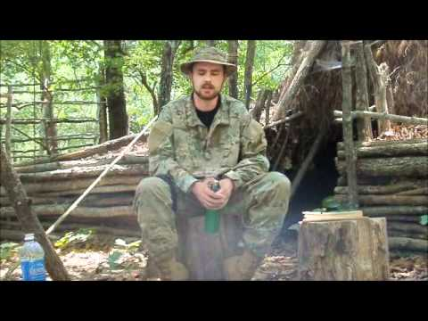 Survival water purification with plants