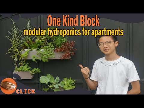Hydroponics for apartments