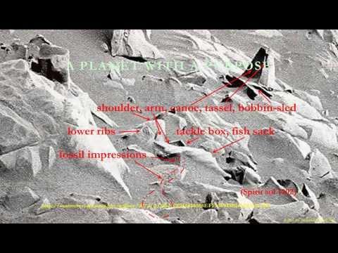 Ares mars apocalypse paleontology: reptiles, mammals, dinosaurs, humans; nasa msl curiosity, rovers,