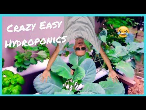 Crazy easy hydroponics / be unique / easy diy hydroponics